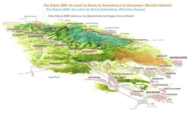 "Plan du site Natura 2000 ""du massif du Donon, du Schneeberg, et du Grossmann"""