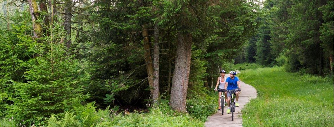 La Com Com crée un pôle d'activités de sports de nature